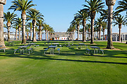 Palm Court at Orange County Great Park