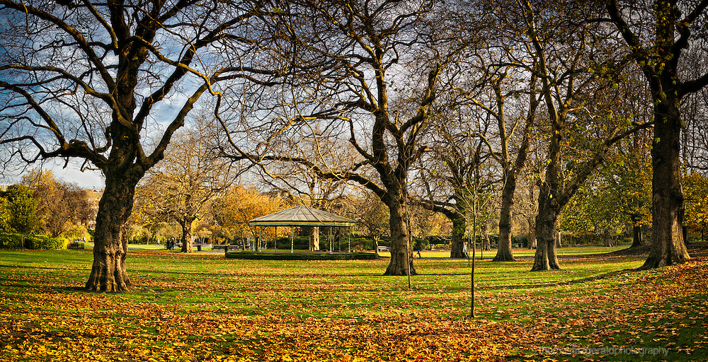 A Panorama of St. Stephen's Green in Autumn