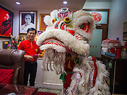 """19 FEBRUARY 2015 - BANGKOK, THAILAND: Lion dancers perform for Chinese New Year in a business on Yaowarat Road in Bangkok. 2015 is the Year of Goat in the Chinese zodiac. The Goat is the eighth sign in Chinese astrology and """"8"""" is considered to be a lucky number. It symbolizes wisdom, fortune and prosperity. Ethnic Chinese make up nearly 15% of the Thai population. Chinese New Year (also called Tet or Lunar New Year) is widely celebrated in Thailand, especially in urban areas that have large Chinese populations.    PHOTO BY JACK KURTZ"""