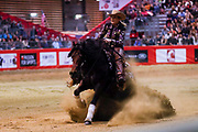Verena Klein on Cromeds Cowboy during the Equestrian NRHA European Derby Open Finals Equita Lyon 2017 on November 4, 2017 at Eurexpo Lyon in Chassieu, near Lyon, France - Photo Romain Biard / Isports / ProSportsImages / DPPI
