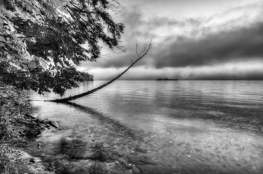 Lake George, Adirondacks, NY<br /> <br /> There's often not much room to see anything other than the opposite shore, with the forest crowding the shoreline.  But a little scene unfolded from this vantage point, shooting up the lake and including this near shore.  In black and white, the image becomes more two dimensional, animating the snag that appears to be reaching for meaning in that sky, while the nearer trees almost reach for the wayward son.  In this dimension, it is hard to tell what is out there--an approaching storm, sunrise, sunset?  Even the reach of the lake is indeterminate.  Things are not always as they seem.