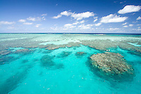 The crystal clear waters and coral of the Outer Great Barrief Reef off Cairns.