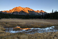 Kangaroo Ridge is reflected on a small stream in the meadows of Washington Pass in the North Cascades of the Okanogan-Wenatchee National Forest in Washington State, USA.
