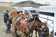 PRICE CHAMBERS / NEWS&amp;GUIDE<br /> Tyler Ennis and Todd Herman from Lovell saddle up their mules on Tuesday as they wait in line on the Elk Refuge Road. Access to the Bridger-Teton National Forest opens Wednesday morning, when people from around the region converge on the area to hunt for shed elk antlers. &quot;We're here for the horns,&quot; Herman said. &quot;We also like the country and the start of the chase up the hill.&quot;