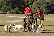 Huntsman Willie Dunn gathers the hounds during the first hunt of the season at Middleton Place Plantation November 27, 2016 in Charleston, South Carolina. Fox hunting in Charleston is a drag hunt using a scented cloth to simulate a fox and no animals are injured.