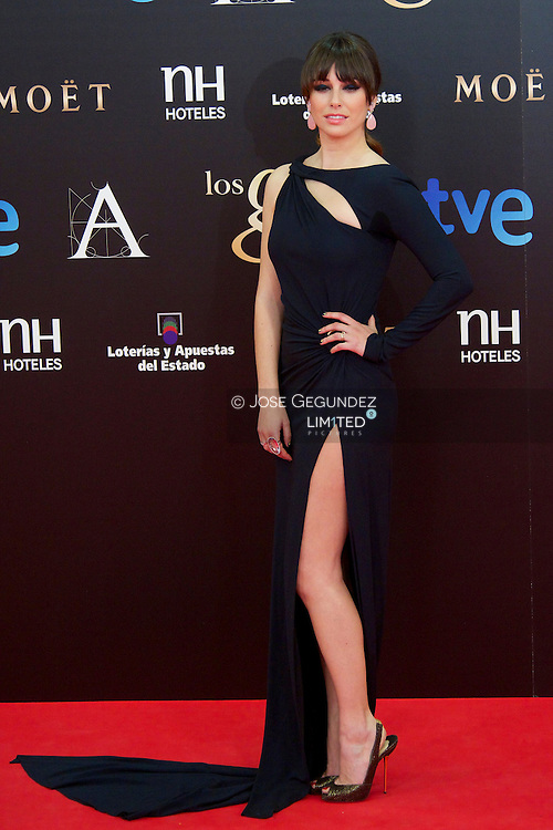 Blanca Suarez arrives to Goya Cinema Awards 2013 ceremony, at Auditorium Hotel on February 17, 2013 in Madrid, Spain