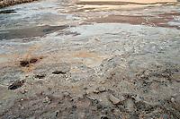 Il complesso produttivo delle saline è situato nel comune italiano di Margherita di Savoia (nome dato dagli abitanti in onore alla regina d'Italia che molto si adoperò nei confronti dei salinieri) nella provincia di Barletta-Andria-Trani in Puglia. Sono le più grandi d'Europa e le seconde nel mondo, in grado di produrre circa la metà del sale marino nazionale (500.000 di tonnellate annue).All'interno dei suoi bacini si sono insediate popolazioni di uccelli migratori e non, divenuti stanziali quali il fenicottero rosa, airone cenerino, garzetta, avocetta, cavaliere d'Italia, chiurlo, chiurlotello, fischione, volpoca.. Formazione di sale al centro di un bacino vuoto con impronte in primo piano
