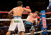 Manny Pacquiao (49-3-2, 37 KOs) knocks down IBO light welterweight champion Ricky Hatton (45-2, 32 KOs) for the second time in round one on Saturday night at the MGM Grand Garden Arena in Las Vegas. Hatton came out aggressively but was dropped by twice by Pacquiao in round one. In round two, Pacquiao dropped Hatton for the count with a left to the chin. Time was 2:59. Hatton was down for several minutes..