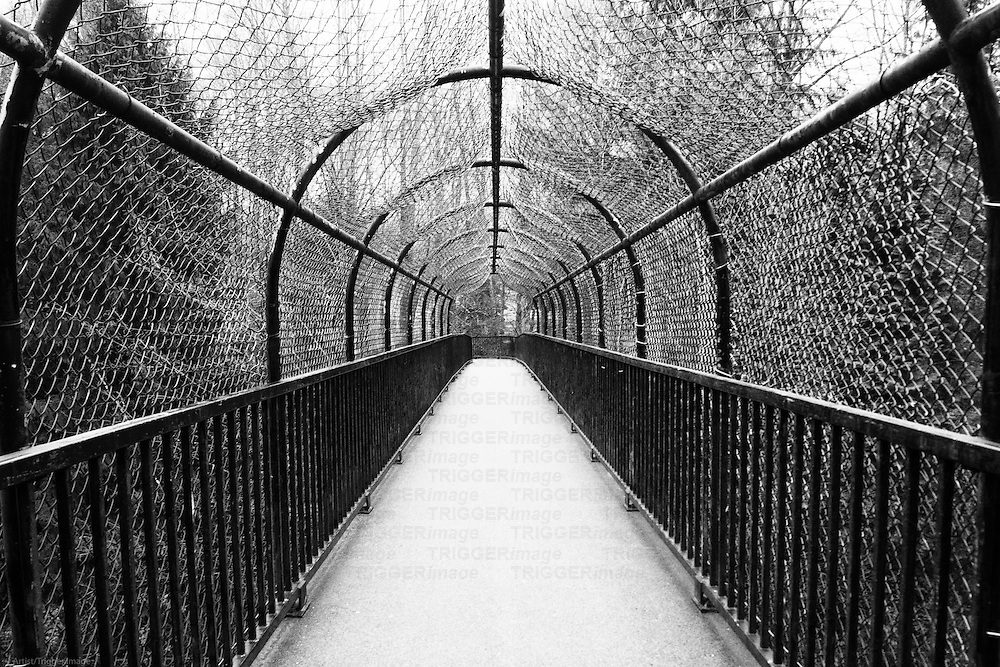 An overpass covered in wire mesh.