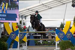 Mcmahon Eoin, (IRL), Talks Cheap<br /> Final 7 years old horses<br /> FEI World Breeding Jumping Championship <br /> Lanaken - Zangersheide 2015<br /> © Hippo Foto - Dirk Caremans<br /> 20/09/15