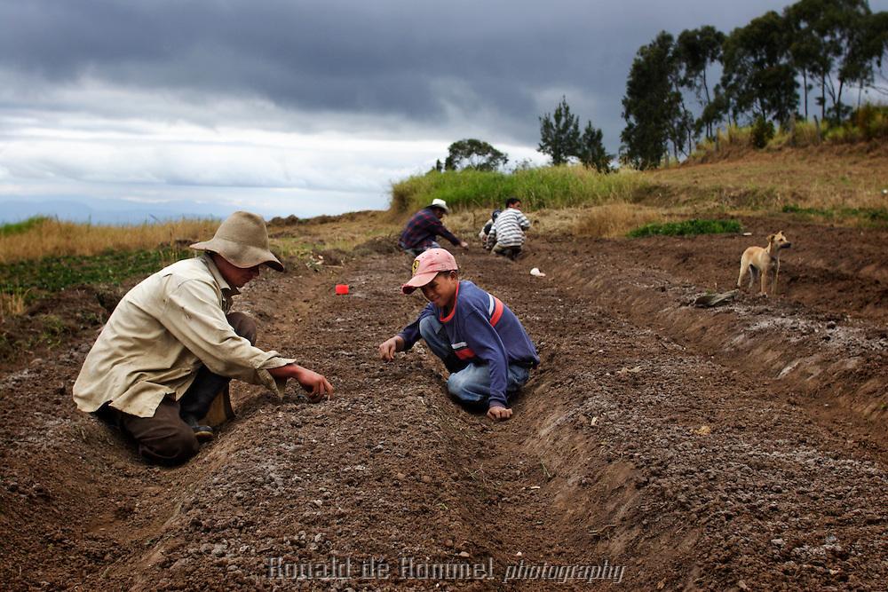 Farmers planting seeds at the cooperative Montes de Mariaten near Tegucigalpa in Honduras.