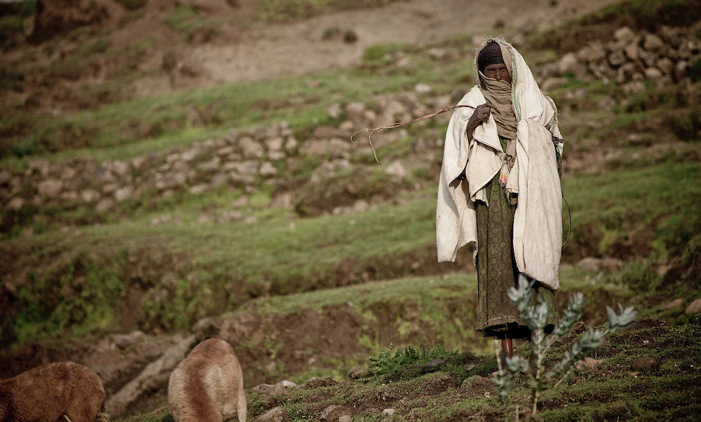 A woman on the Guassa Plateau, Ethiopia, herds her goats