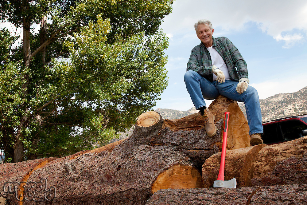 Low angle view of man sitting on a huge tree trunk