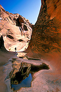 Hiker and Pools in narrow canyon, Red Cliffs Recreation Area, Utah's Dixie, near St. George, UTAH