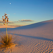 Sunset casts its shadows in the dunes at White Sands National Monument in Alamogordo, New Mexico.