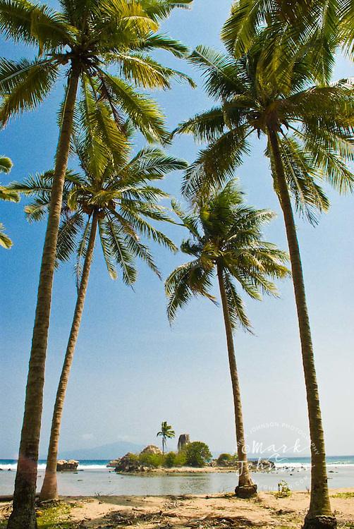 Islet seen through row of coconut trees, S. Sumatra, Indonesia