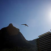 Hang gliders fly past the surrounding hillsides and buildings and prepare to land on the beach in the late afternoon light at Sao Conrado beach, Rio de Janeiro,  Brazil. 8th July 2010. Photo Tim Clayton..