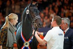 553, Kremlin MD<br /> KWPN Stallionshow - 's Hertogenbosch 2018<br /> © Hippo Foto - Dirk Caremans<br /> 03/02/2018
