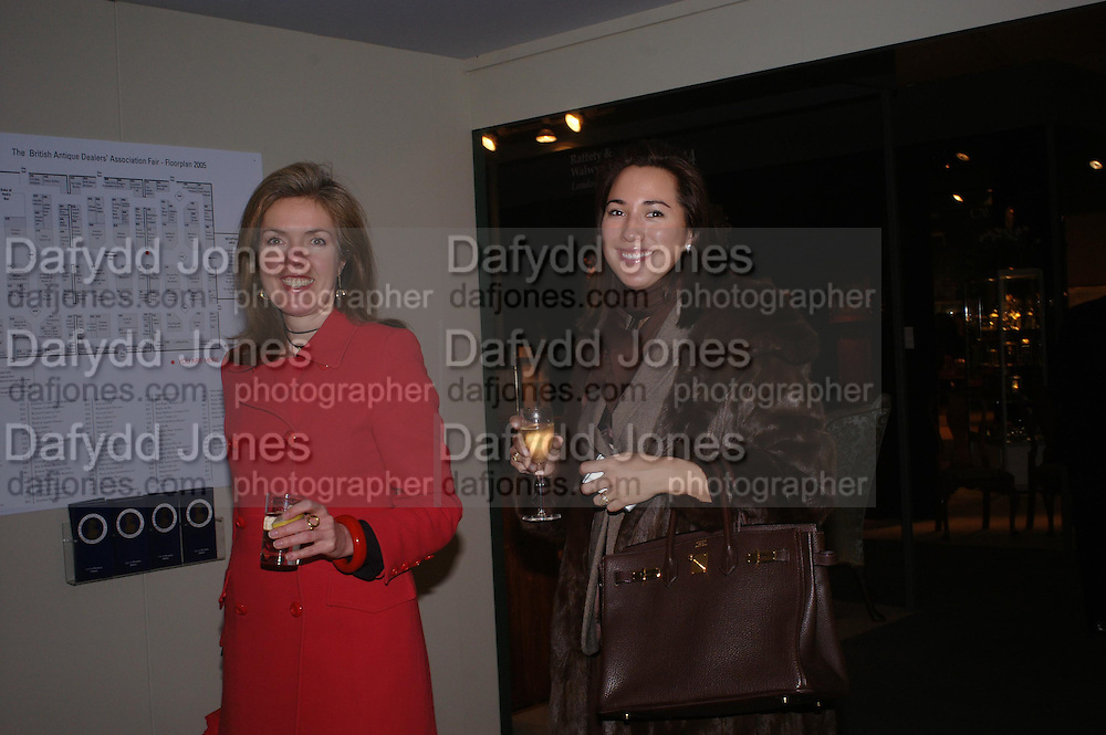 Lois Cox. BADA Antiques &amp; Fine Art Fair - gala evening <br /> reception and dinner, held in aid of Action Medical Research. Duke of York's HQ, King's Road, London. 10 March 2005. ONE TIME USE ONLY - DO NOT ARCHIVE  &copy; Copyright Photograph by Dafydd Jones 66 Stockwell Park Rd. London SW9 0DA Tel 020 7733 0108 www.dafjones.com
