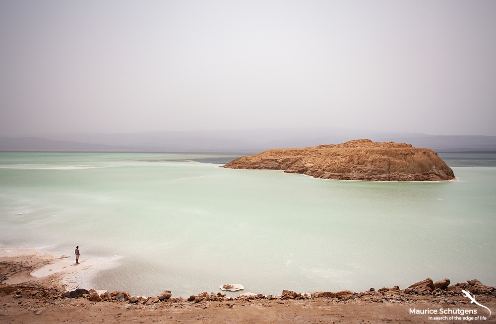A backpacker stands on the shore of lac assal