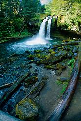 Iron Creek Falls, Gifford Pinchot National Forest, Washington, US