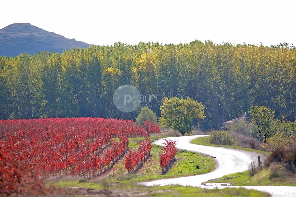 Sotos del Ebro. Haro. La Rioja ©Daniel Acevedo / PILAR REVILLA