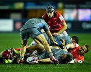 Nick Williams of Cardiff Blues sets the ball at the ruck<br /> <br /> Photographer Simon King/Replay Images<br /> <br /> European Rugby Challenge Cup Round 2 - Cardiff Blues v Leicester Tigers - Saturday 23rd November 2019 - Cardiff Arms Park - Cardiff<br /> <br /> World Copyright © Replay Images . All rights reserved. info@replayimages.co.uk - http://replayimages.co.uk