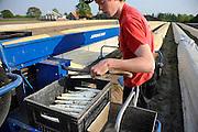 Nederland, Groesbeek, 24-4-2009Jongeren helpen mee met de oogst van de asperges, het witte goud. De machine, de spin, tilt het plastic op en laat het weer zakken over het aspergebed.Foto: Flip Franssen/Hollandse Hoogte