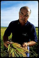 Erico Ribeiro, world's largest rice grower, inspects sheaf of rice on Rio Grande do Sul farm. Brazil