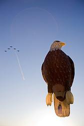 """Bald Eagle Balloon""- This hot air balloon is part of The Great Reno Balloon Race."