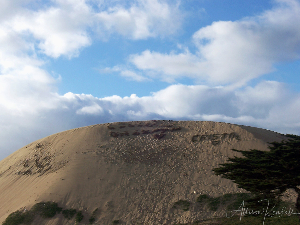 A local tradition, messages are written across a large dune using iceplant and branches, visible from Highway 1 as it passes along Monterey Bay