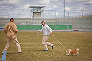 Two handlers work with Lordy in the exercise field.  Pet pictures by Michael Kloth.