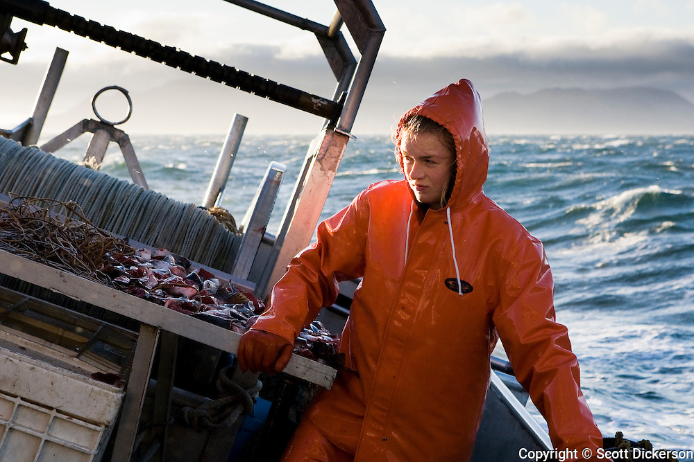 Commercial fishing deckhand, Emma Teal Laukitis, on the deck of the F/V Lucky Dove pauses from baiting halibut longline hooks to hold on tight during a stormy day in the Aleutian Islands, Alaska.
