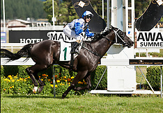 Palmerston  North-Racing, Tod Seeds Manawatu Challenge Stakes, December 22
