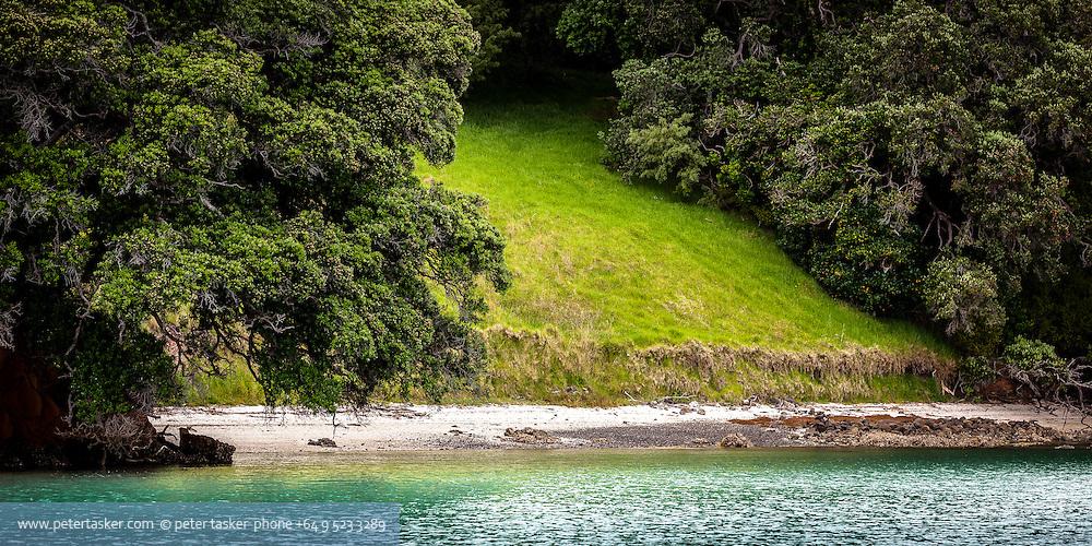 Patch of grass and beach, Te Kouma Harbour, Coromandel Peninsula, Hauraki Gulf, New Zealand.