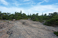 Bare granite trail marked with Bates cairns along the South Ridge of Cadillac Mountain, Acadia National Park, Maine, USA