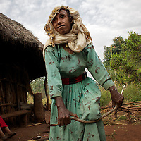 Belaynesh prepares firewood while cooking breakfast for her neice (looking on) and herself outside their home in the village of Amba Zetegn. <br /> <br /> Belaynesh Hussen (age 50) lives with her niece Tsehaynesh Bistegn, age 10, in a thatched house in Amba Zetegn, 20km from Assosa town. She farms sorghum, maize, teff and soya, all sold through the local farmers co-operative society of which she has been a part for the past three years. This village co-op is affiliated to the Assosa Farmers Multipurpose Cooperative Union.<br /> <br /> Growing oil seeds presents challenges for the famers of Assosa in western Ethiopia. Many of the most vulnerable are forced to sell to when they cannot be guaranteed a good price for their product. Farms are often located in isolated areas which entails huge amounts of time and effort simply getting seeds to market. Many farmers do not have the resources to properly invest in their land and are tied into exploitative loan arrangements with brokers that deny them the chance to take proper control of their farms. And, as with other agricultural products, it is those agents that process the seeds into oil that secure the greatest profit, very little of which trickles down to benefit the farmer.<br /> <br /> In response to these pressures, twenty farming cooperatives have formed the Assosa Farmers Multipurpose Cooperative Union. By working together, individual farmers are able to pool their resources and squeeze out exploitative agents and brokers. The Union has sufficient capital that it can afford to wait for prices to reach a level at which it is profitable to sell seeds to market. The Union provides loans to constituent members together with training and advice to help farmers make better use of their land. And by collectively hiring vehicles through the Union, farmers need not spend so much time ferrying their produce to market. <br /> <br /> All these measures benefit farmers and have now provided the Assosa Farmers Multipurpose Cooperative Union the confidence to establish an oil-