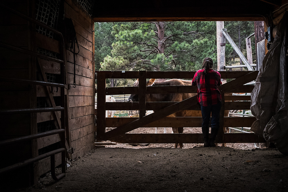 Tereza Lopez waiting to collect the next cow to be milked in the Milking Barn at EZ Rocking Ranch | August 23, 2014