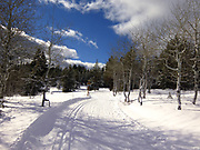 A beautiful winter afternoon for cross country skiing at Banner Ridge Park and Ski area.