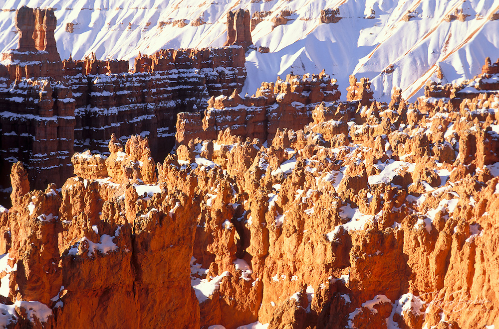 Morning light on the Silent City in winter, Bryce Amphitheater, Bryce Canyon National Park, Utah