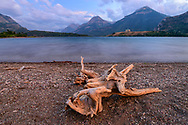 North America, Canada, Canadian, Alberta,Rocky Mountains, WatertonLakes, National Park, UNESCO,World Heritage, wood, shore, landscape,