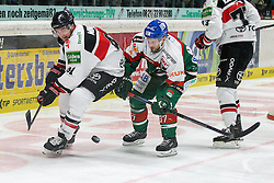 12.12.2014, Curt Fenzel Stadion, Augsburg, GER, DEL, Augsburger Panther vs Koelner Haie, 26. Runde, im Bild l-r: im Zweikampf, Aktion, mit Chris Minard #41 (Koelner Haie) und Arvids Rekis #37 (Augsburger Panther) // during Germans DEL Icehockey League 26th round match between Adler Mannheim and Koelner Haie at the Curt Fenzel Stadion in Augsburg, Germany on 2014/12/12. EXPA Pictures © 2014, PhotoCredit: EXPA/ Eibner-Pressefoto/ Kolbert<br /> <br /> *****ATTENTION - OUT of GER*****