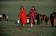 Mongolia. Ulaanbaatar. chance model agency fashion and casting in the steppe in Hundlun bulag with a family of cattle breeder,  near  Ulanbaatar -