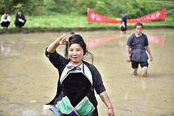 April 26, 2018 - Congjian, Congjian, China - Congjiang, CHINA-26th April 2018: Miao people attend a loach catching contest during traditional Lusheng Festival in Congjiang, southwest China's Guizhou Province. (Credit Image: © SIPA Asia via ZUMA Wire)