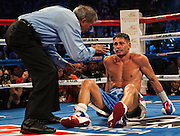 Chris Algieri of United States stands on the floor after being hit by Manny Pacquiao (not pictured) during their World Welterweight Championship bout at the Cotai Arena on November 23, 2014 in Macau, China. AFP PHOTO / XAUME OLLEROS
