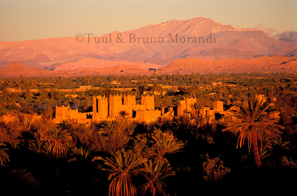 Maroc, Haut Atlas, Region de Ouarzazate, Kasbah de Amerhidil, Skoura- Kasbah // Morocco, Atlas mountain, Ouarzazate area,  Amerhidil kasbah, Skoura village