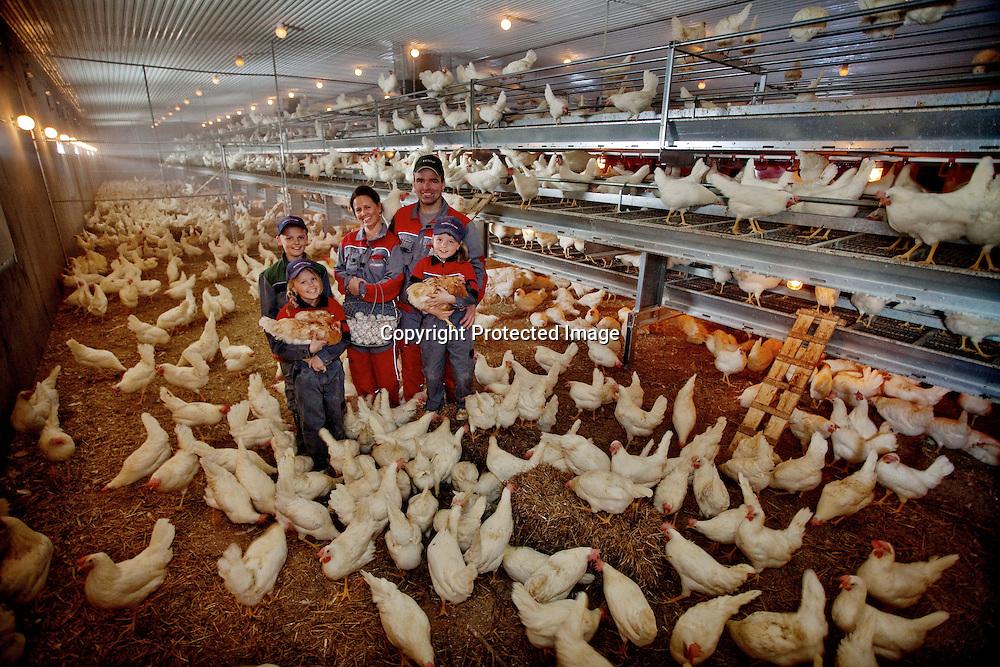 26032009, Totenvika.HØNEFAMILIEN: Hele familien Helgestad i hønsehuset for å samle egg fra 7500 høner som daglig legger ett egg hver. Fra v.: Ole Martin (12), Marthe (9), Anne Lene (37), Haaken (43) og Vilde (7). ..Foto: Daniel Sannum Lauten/VG