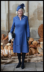 OCT 16 2013 The Duchess of Cornwall at Westminster Abbey