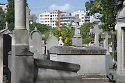 cemetery Montparnasse with flats in the background