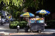 Hotdog vendor on 81 St. and Madison Avenue, New York City.
